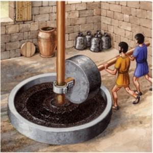A-agricultura-na-Roma-antiga-e-suas-ferramentas-extracao-de-azeite