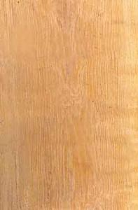 As-madeiras-mais-indicadas-para-construcao-de-telhado-bacuri
